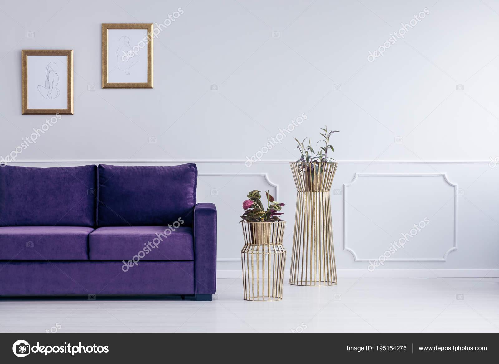 Pflanzen Neben Lila Sofa Gegen Graue Wand Mit Zeichnungen In Gold Frames Im  Wohnzimmer Interieur U2014 Foto Von Photographee.eu