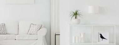 Close-up of white, metal rack with a small palm plant and a sofa in the background of a minimalist living room interior