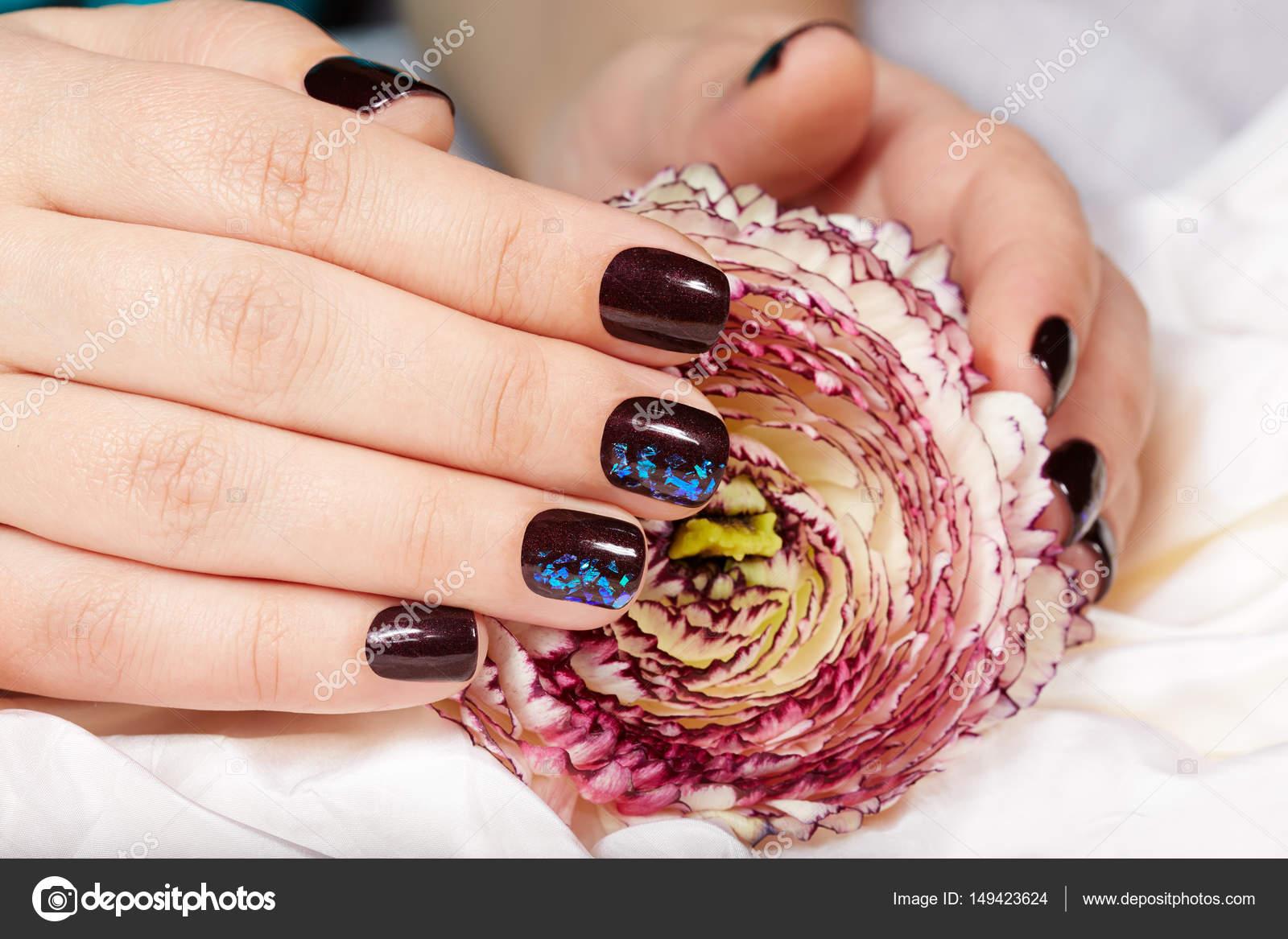 Hände mit kurzen gepflegten Nägeln gefärbt mit dunklen lila ...