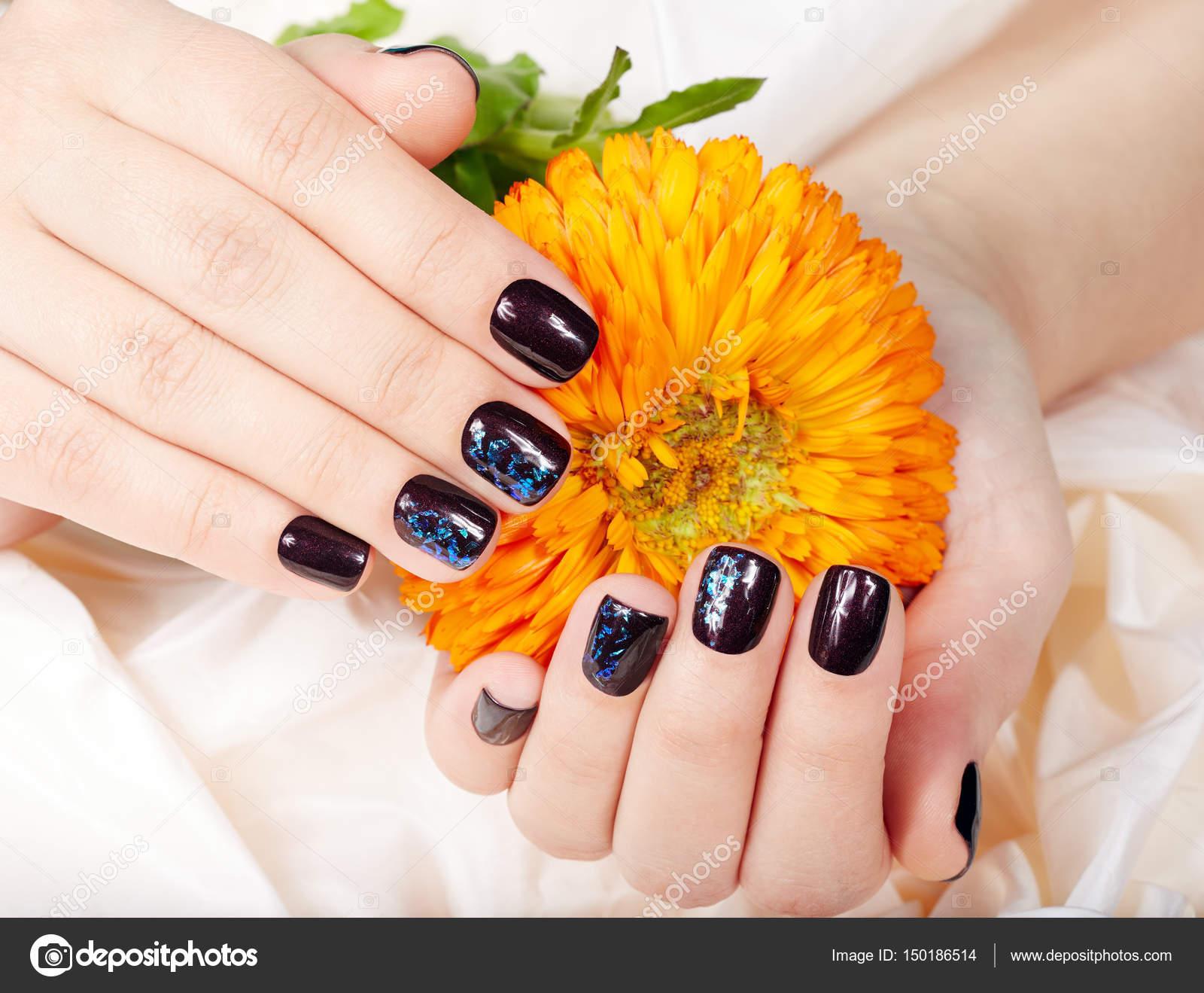 Manos con corta uñas cuidadas coloreados con esmalte de uñas morado ...
