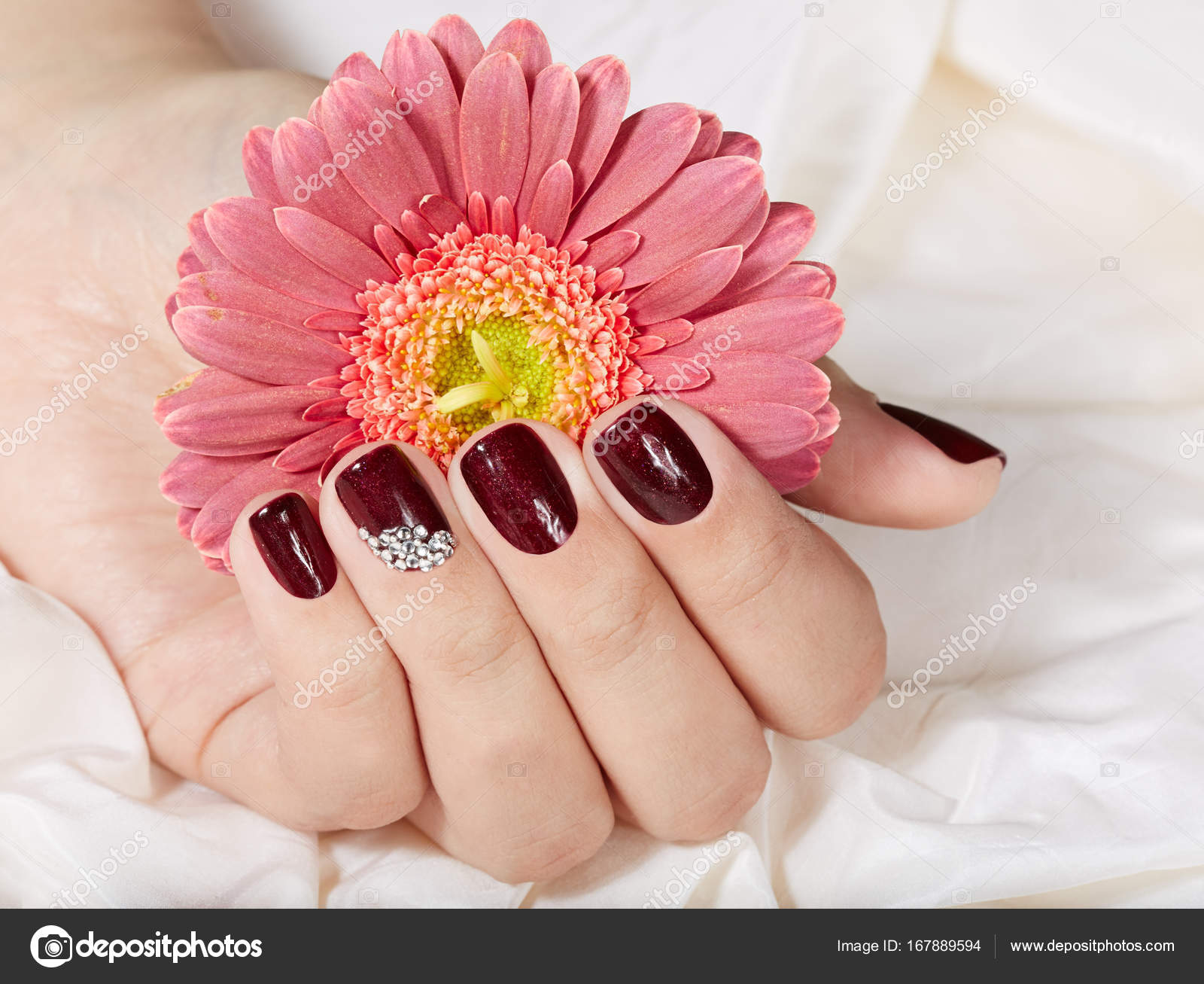 Hand with short manicured nails colored with dark purple nail polish ...
