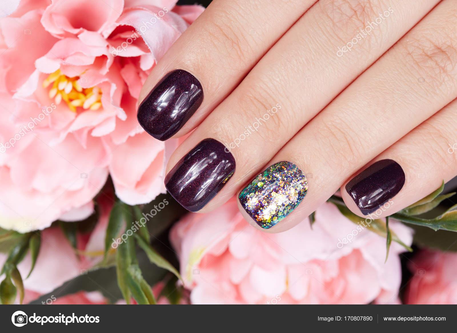 Hand mit gepflegten Nägeln gefärbt mit dunklen lila Nagellack und ...