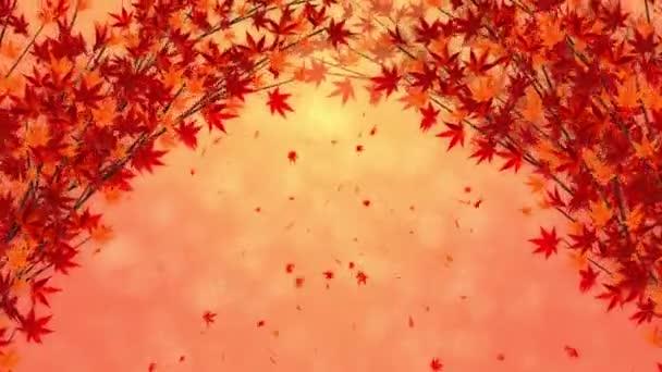 Větvička s padajícími červenými listy. Tradiční podzimní listová scenérie krásného japonského stylu elegance. Animace smyčky.