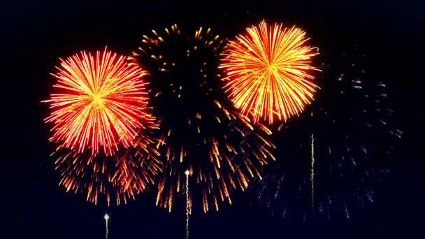 Barevný ohňostroj rozsvítí oblohu. Pohled na festival ohňostrojů. Animace smyčky Cg.