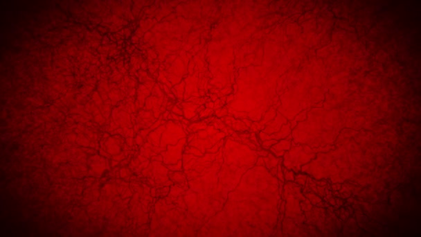 3D loop animation of human blood vessel. Capillaries. Eye blood on red background. Anatomical background. Medical concept.