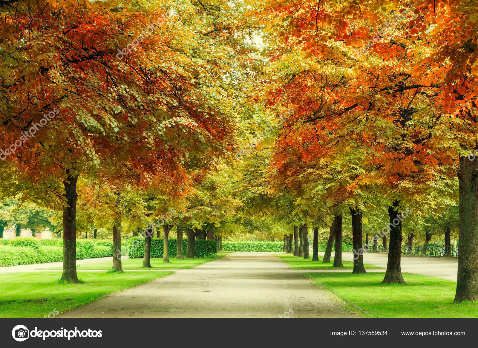 Sfondi di paesaggi bellissimi sfondi for Paesaggi bellissimi per desktop