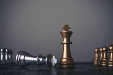 King and Knight of chess setup on dark background . Leader and t