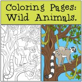 Fotografie Coloring Pages: Wild Animals. Mother lemur with her baby.