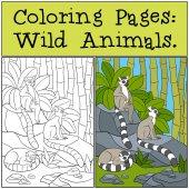 Fotografie Coloring Pages: Wild Animals. Three little cute lemurs.