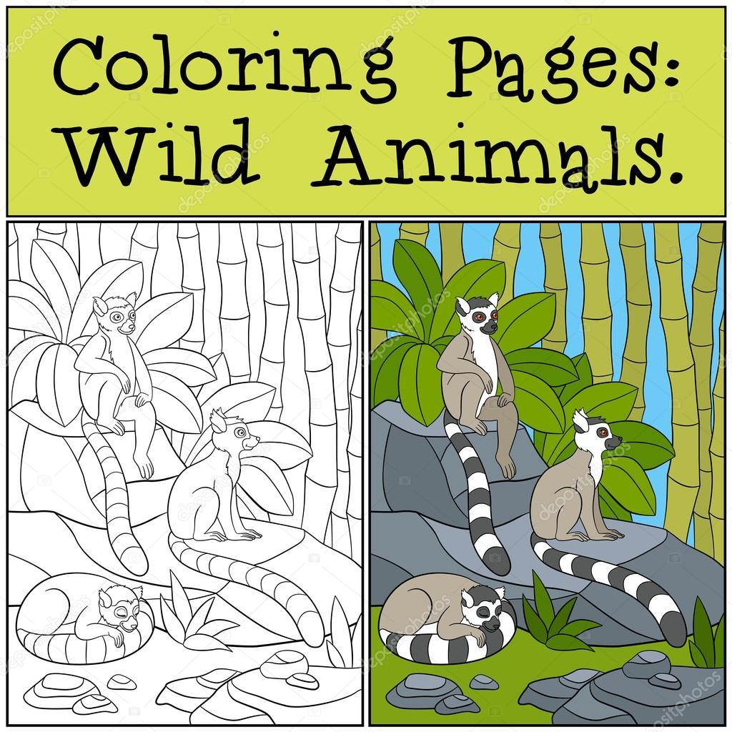 Malvorlagen: Wilde Tiere. Drei kleine niedliche Lemuren ...