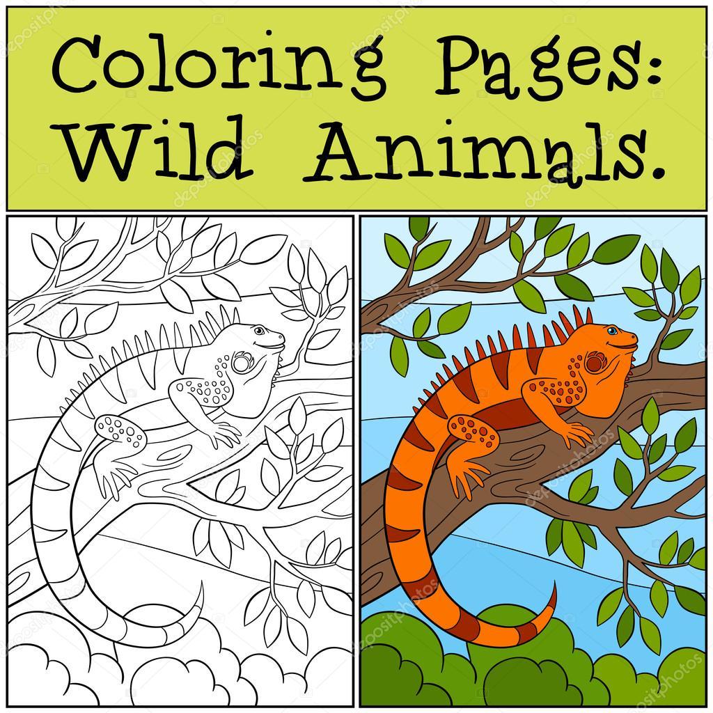 Malvorlagen: Wilde Tiere. Süße orange iguana — Stockvektor © ya ...