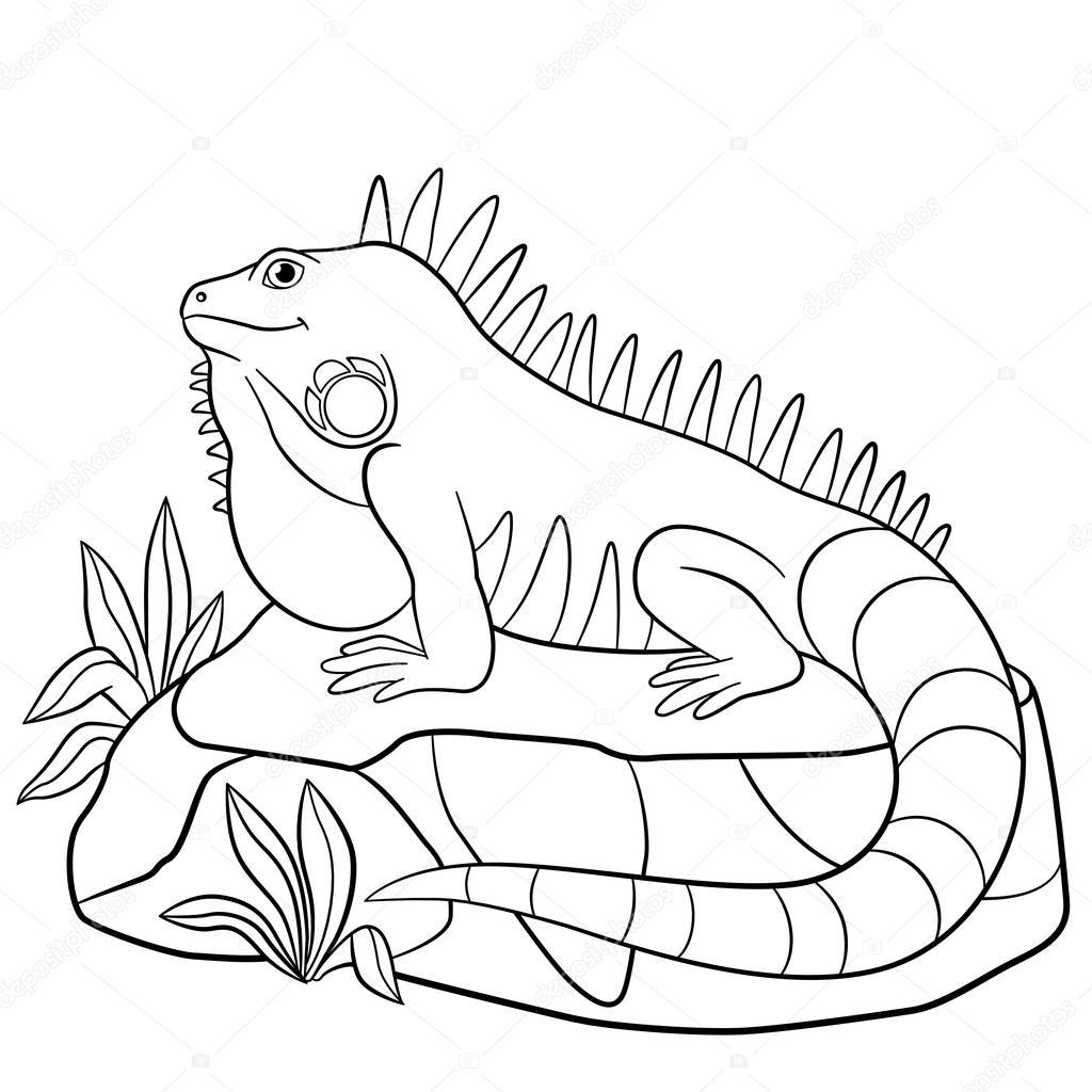 Imágenes Iguanas Para Colorear Dibujos Para Colorear