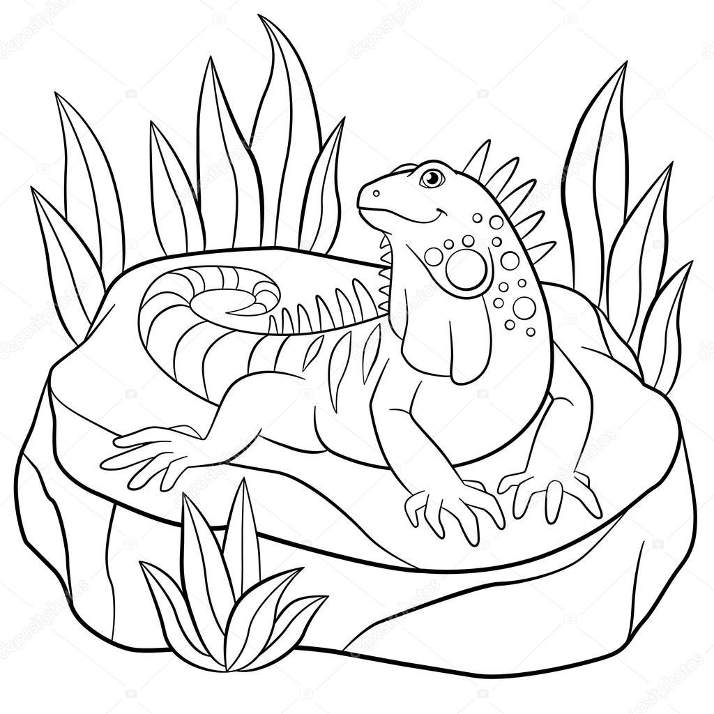 Dibujos para colorear. Linda iguana se asienta sobre la roca ...