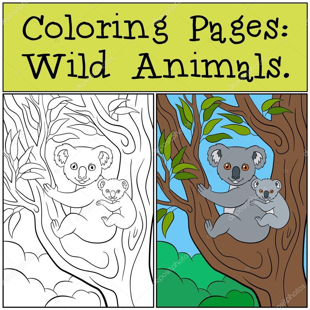 Dibujos para colorear: Animales salvajes. Madre koala con su lindo ...
