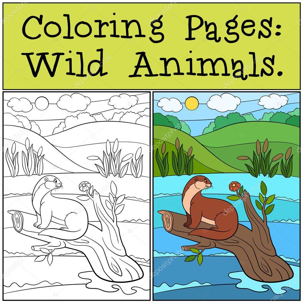Malvorlagen: Wilde Tiere. Kleine niedliche otter — Stockvektor © ya ...