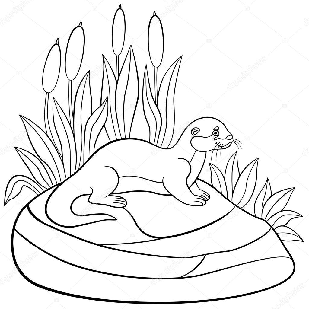 Dibujos Para Colorear Little Otter Lindo Esta Parado Sobre La - Dibujos-para-pintar-piedras