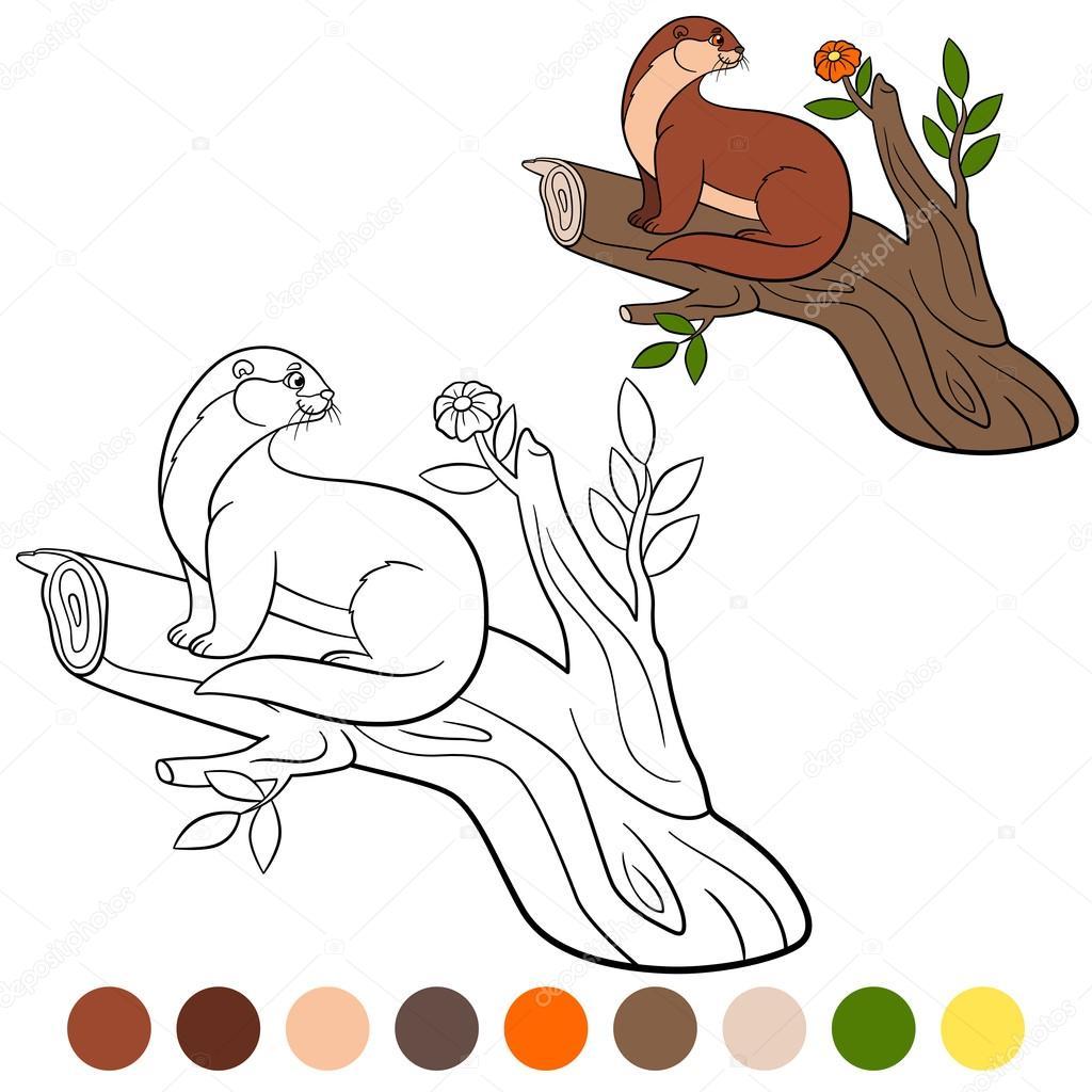 Boyama Sayfası Küçük şirin Su Samuru Ağaç Dalı üzerinde Oturur