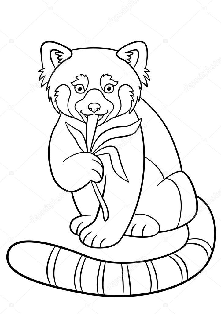 Boyama Sayfaları Küçük şirin Kırmızı Panda Yaprakları Yiyor Stok
