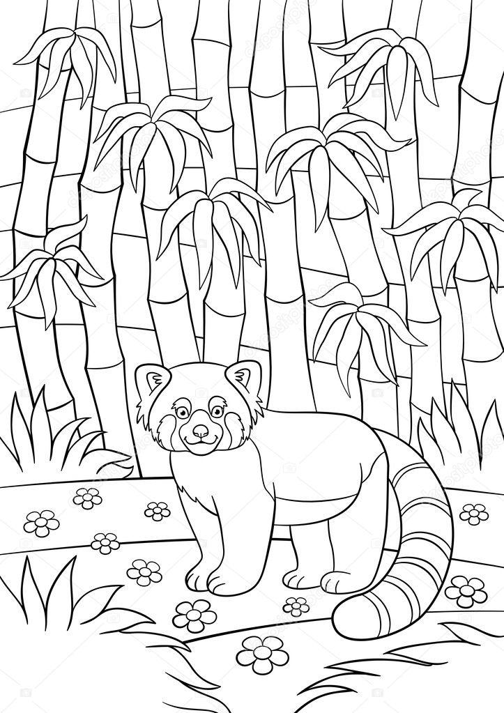 Panda comiendo bambu para colorear | Dibujos para colorear. Pequeño ...