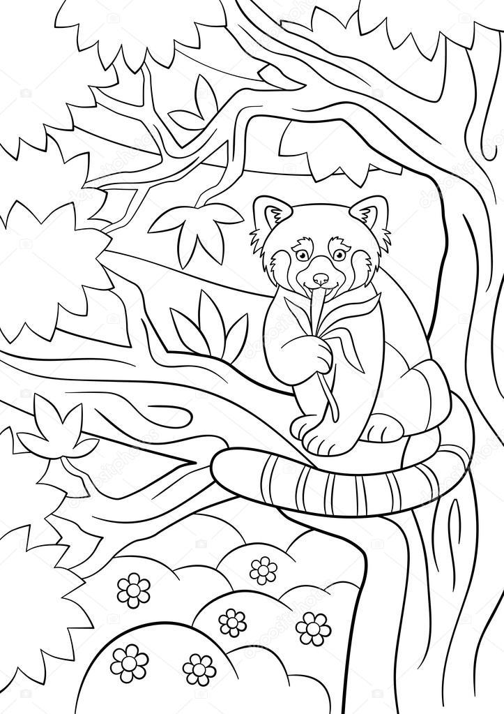 Dibujos para colorear. Pequeño panda rojo lindo come hojas — Vector ...