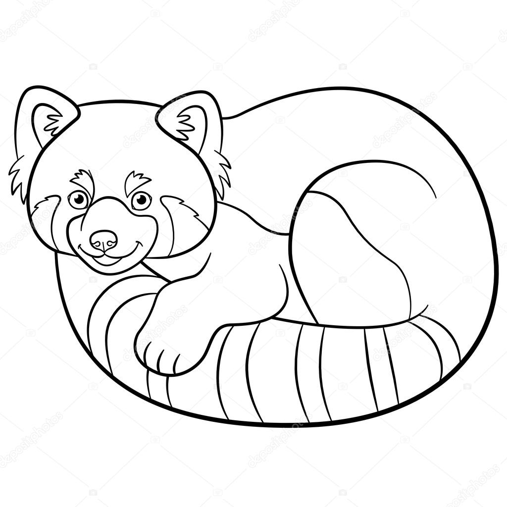 kleurplaten kleine schattige rode panda stockvector