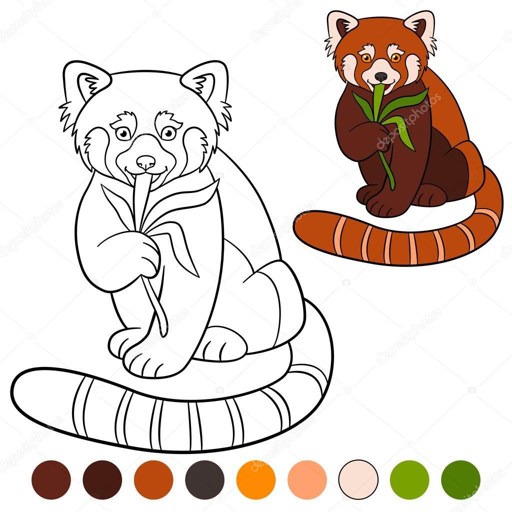 kleurplaat rode panda kleine schattige rode panda eet
