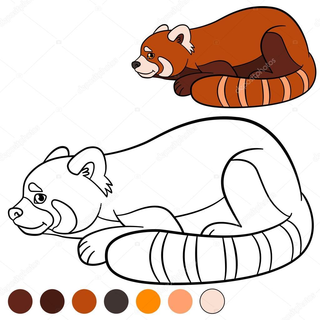 Página para colorear: panda rojo. Pequeño panda lindo de rojo ...