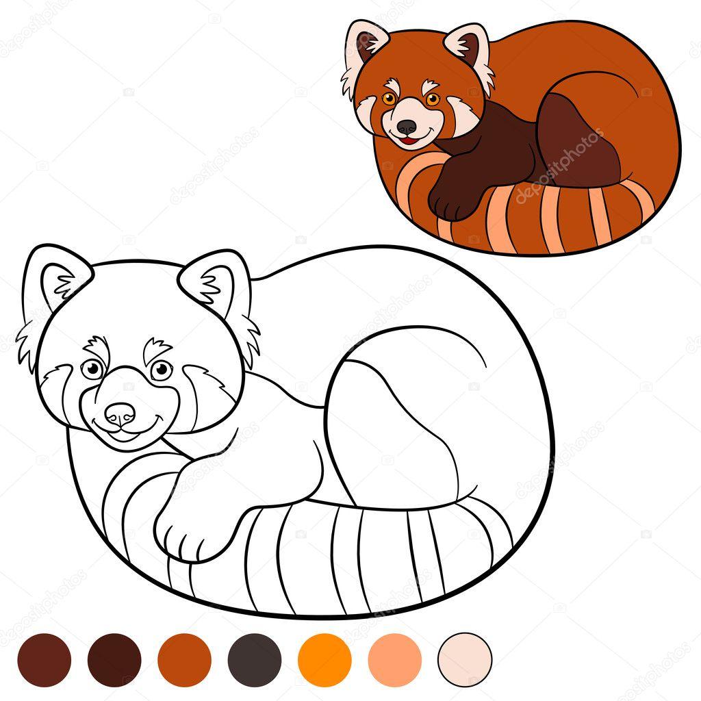 Kleurplaat Rode Panda Kleine Schattige Rode Panda Stockvector