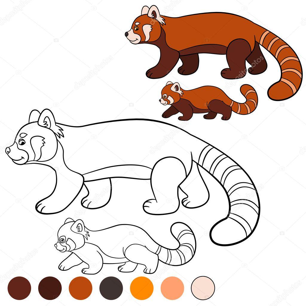 kleurplaat rode panda moeder rode panda wandelingen met
