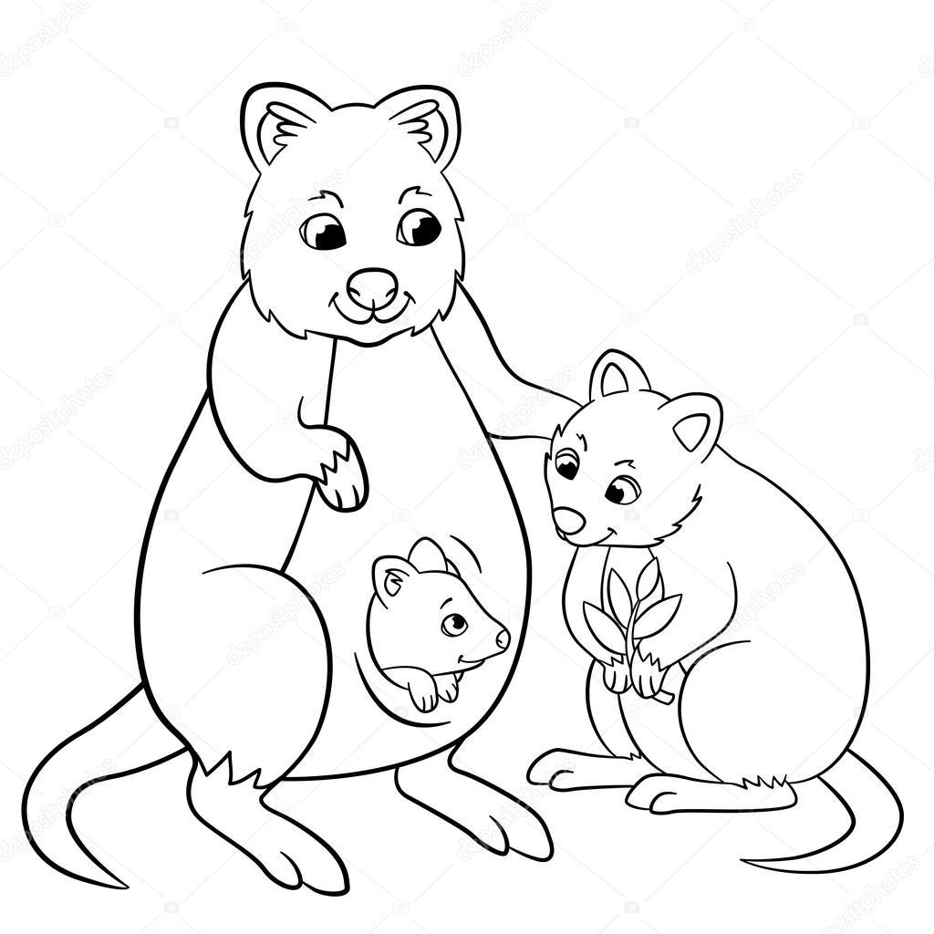 Malvorlagen. Mutter Quokka mit ihrem kleinen niedlichen Babys ...