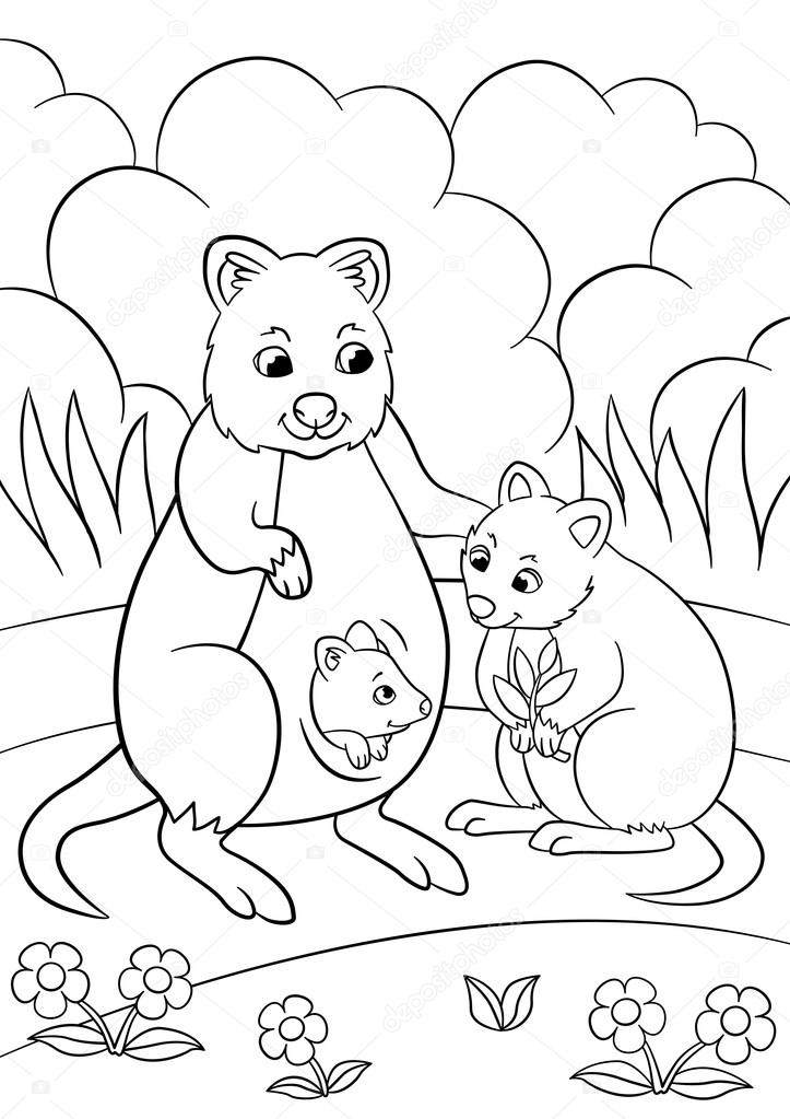 Coloring Pages. Mother Quokka With Her Cute Babies. U2014 Stock Vector