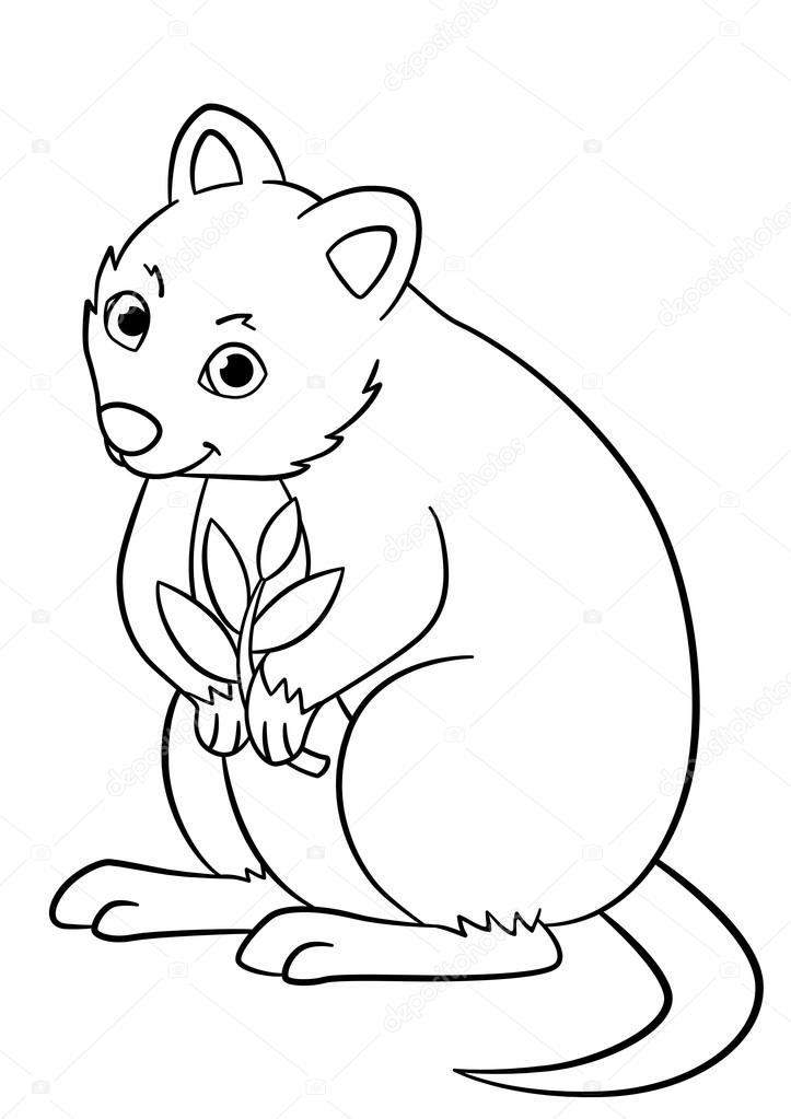 Good Coloring Pages. Little Cute Quokka Holds The Plant In The Hand And Smiles.  U2014 Vector By Ya Mayka
