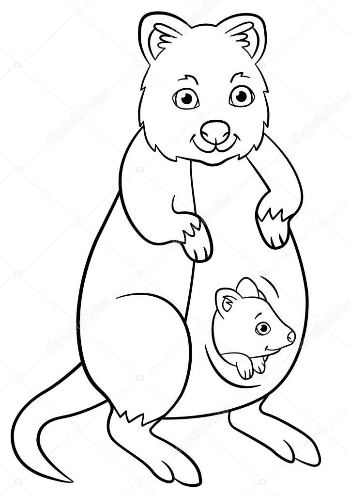 Dibujos para colorear. Quokka madre con su pequeño bebé lindo ...