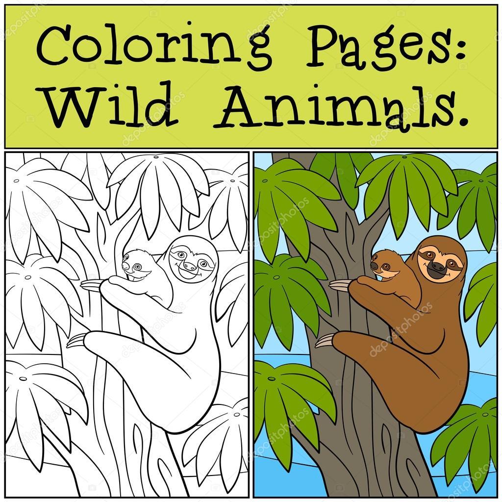 Dibujos para colorear: Animales salvajes. Perezoso de la madre con ...