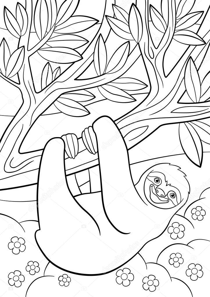 Malvorlagen. Niedliche faulen Faultier auf dem Baum — Stockvektor ...