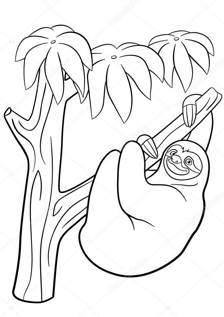 Boyama Sayfaları şirin Tembel Tembel Ağaç üzerinde Asılı Stok