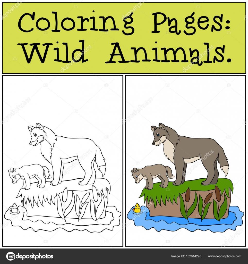 Dibujos para colorear: Animales salvajes. Padre lobo con su pequeño ...