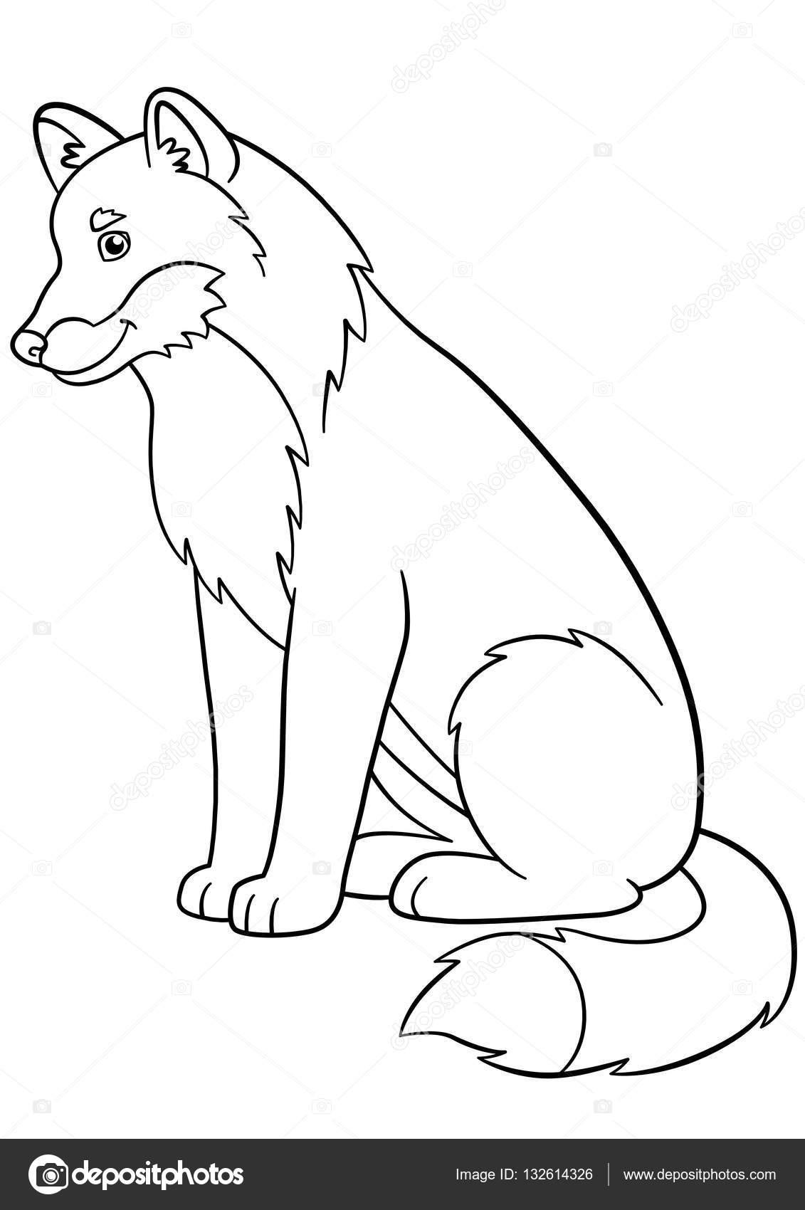 Dibujos para colorear. Sonríe lobo hermoso lindo — Archivo Imágenes ...