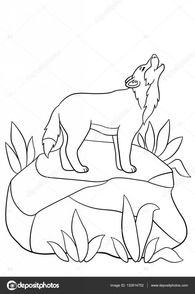 Imágenes: un lobo para colorear | Dibujos para colorear. Soportes de ...