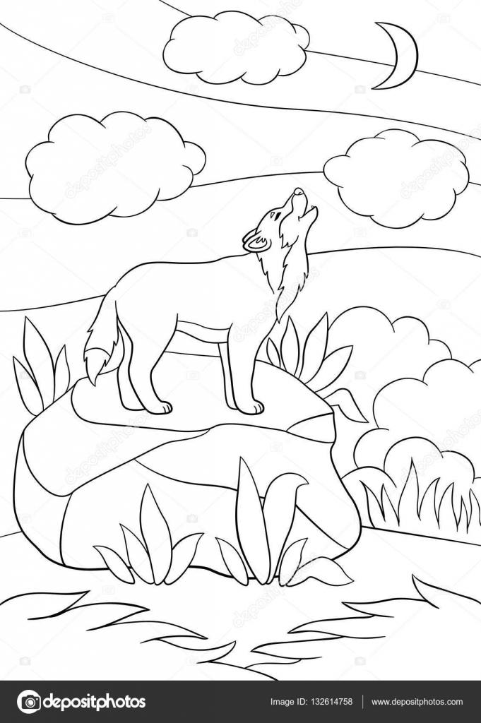 Disegni da colorare carino bella lupo ululare alla luna - Lupo mannaro immagini da colorare ...