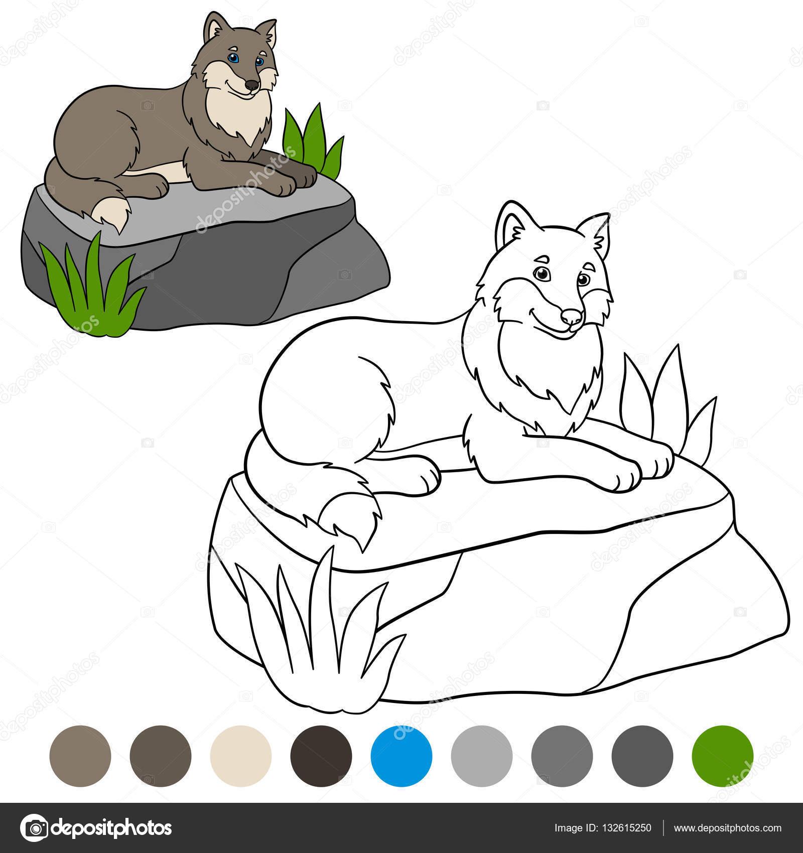 Color me: Lobo. Lindo hermoso Lobo se encuentra en la piedra ...