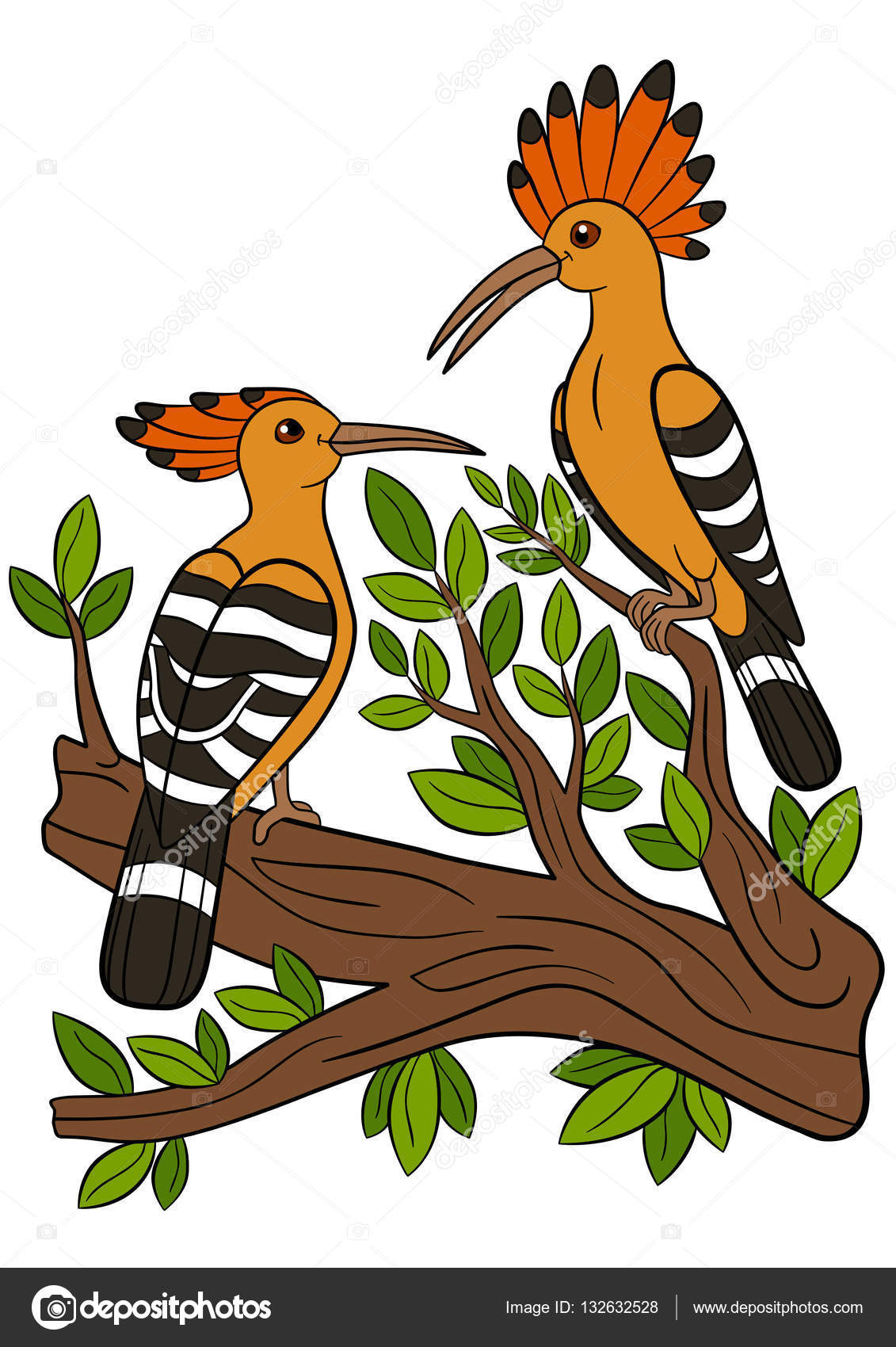 Cartoon birds. Two beautiful hoopoes sit on the branch. — Stock ...