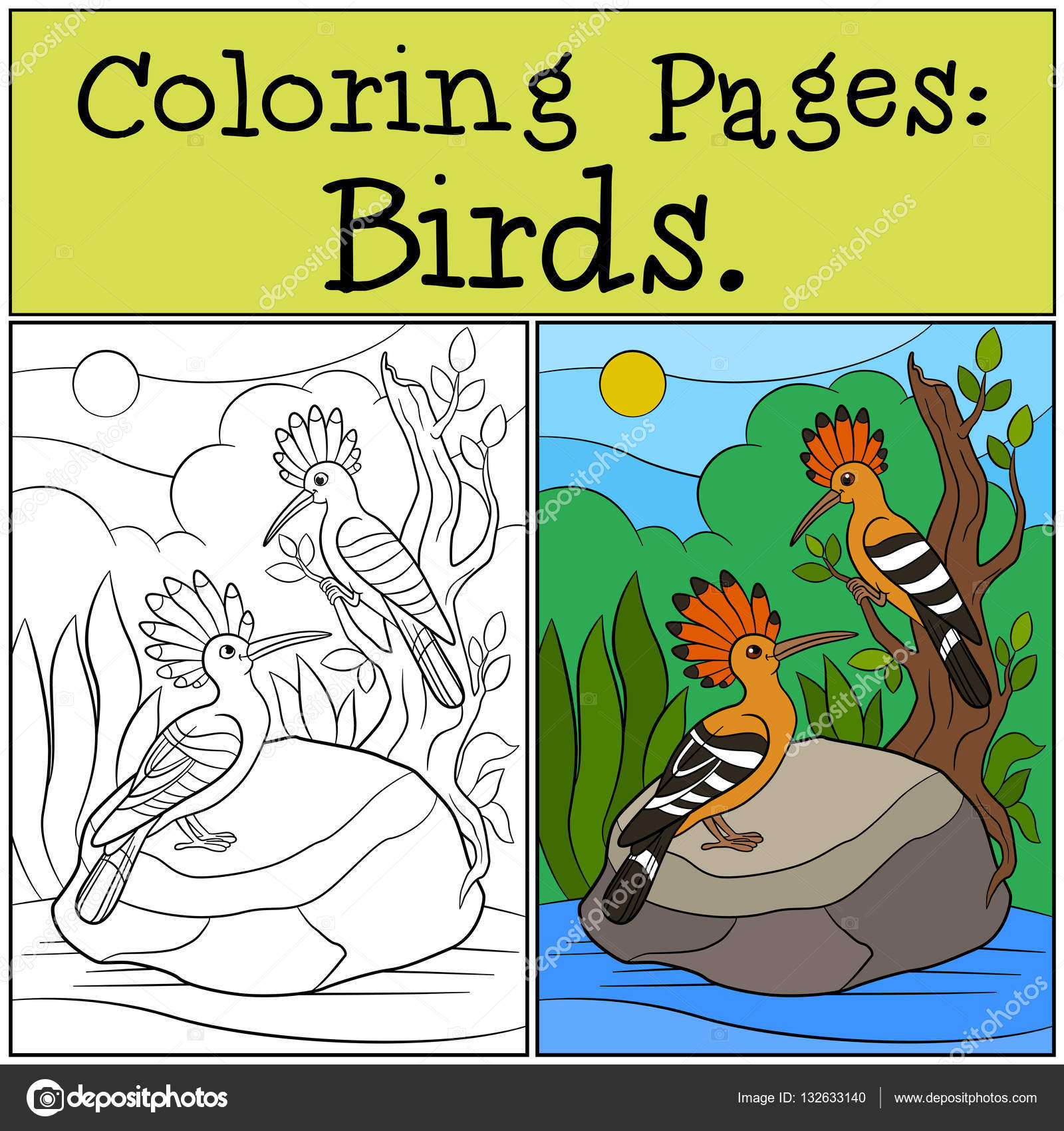 Coloring Pages: Birds. Two cute beautiful hoopoes smile. — Stock ...