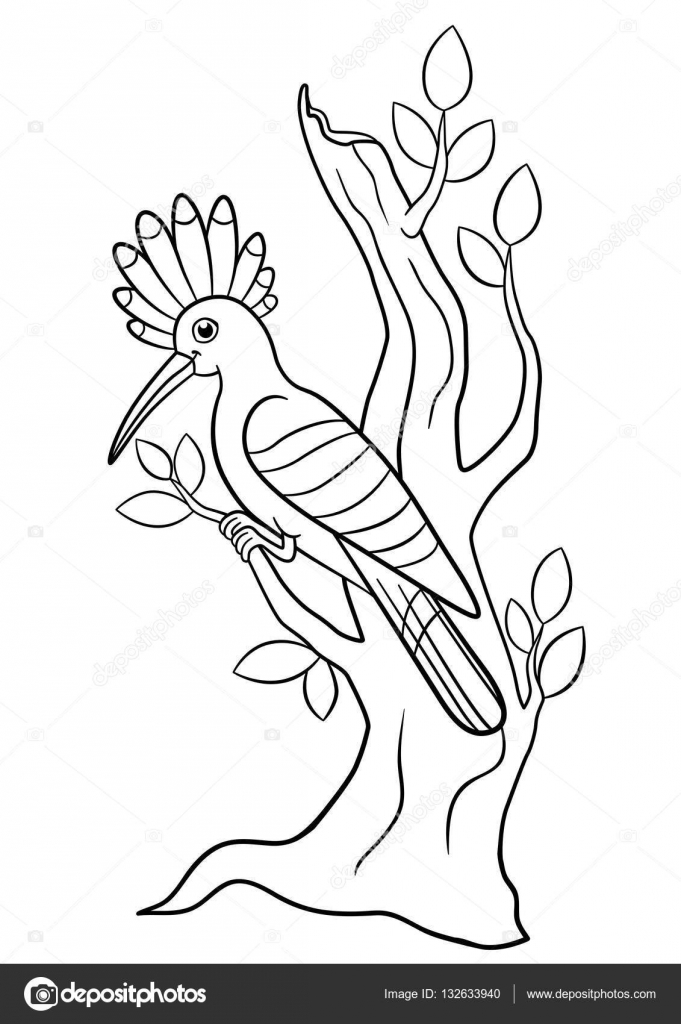 Boyama Sayfaları Sevimli Güzel Ibibik Ağaç Dalı üzerinde Oturur