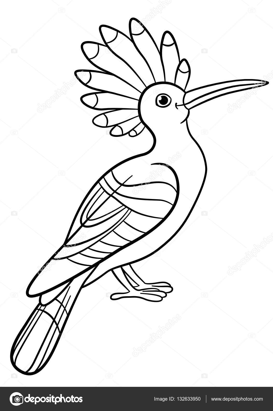 Coloring pages. Cute beautiful hoopoe sits. — Stock Vector © ya ...