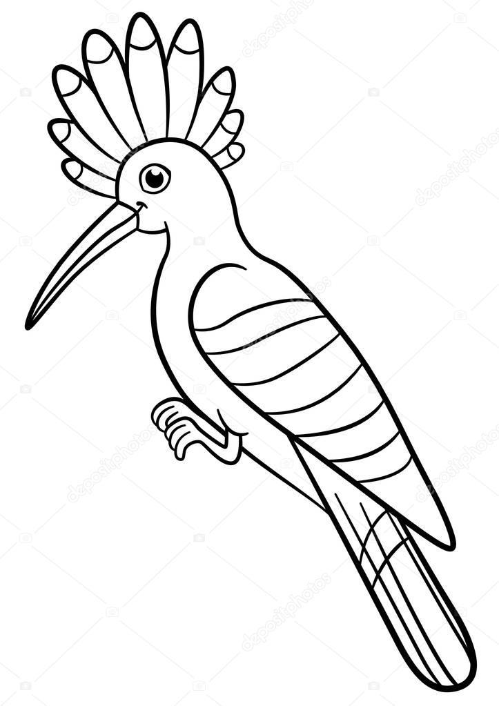 Obrazki Do Kolorowania Ładny Piękny Dudek Ptak Siedzi