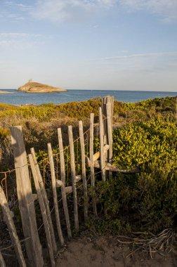 Corsica: Mediterranean maquis on a coastal path on the Cap Corse with view of the nature reserve of les Iles Finocchiarola, the three little island named A Terra, Mezzana and Finocchiarola