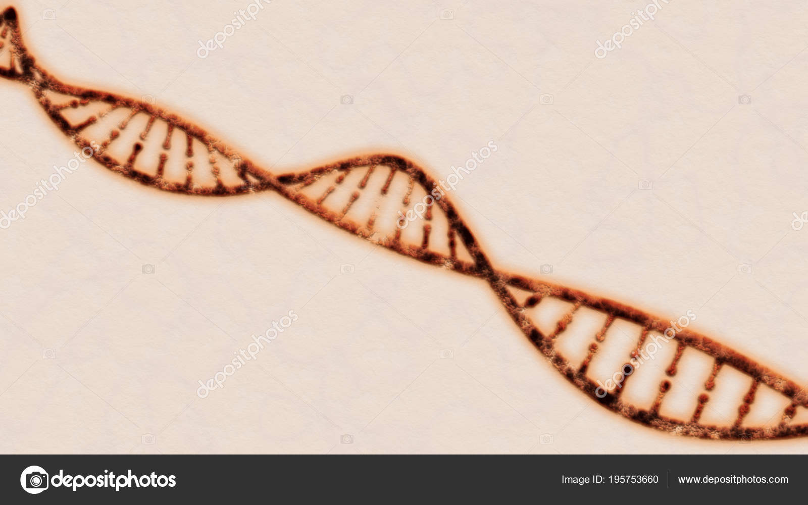 dna nucleotide ba self reliance - HD1600×1000