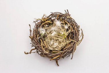 Easter bird nest isolated on white background. Zero waste, DIY concept. Soft feathers, birch branches