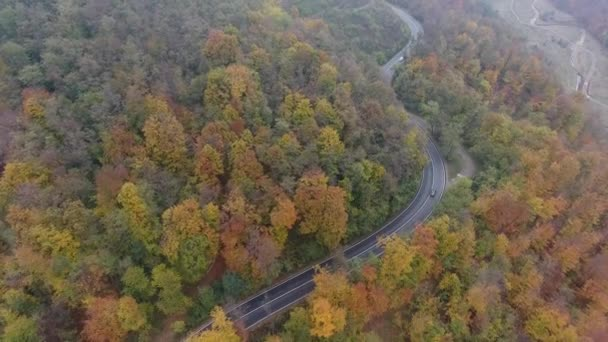 Aerial view of road from forest, autumn season, beautiful colorful landscape